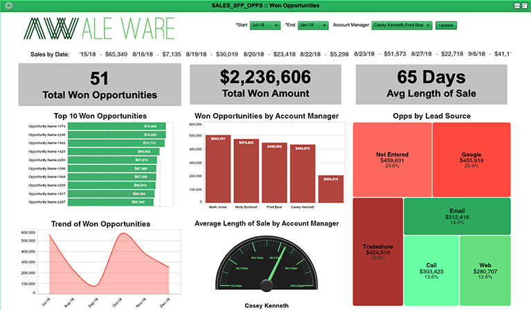Won Opportunities Dashboard Example